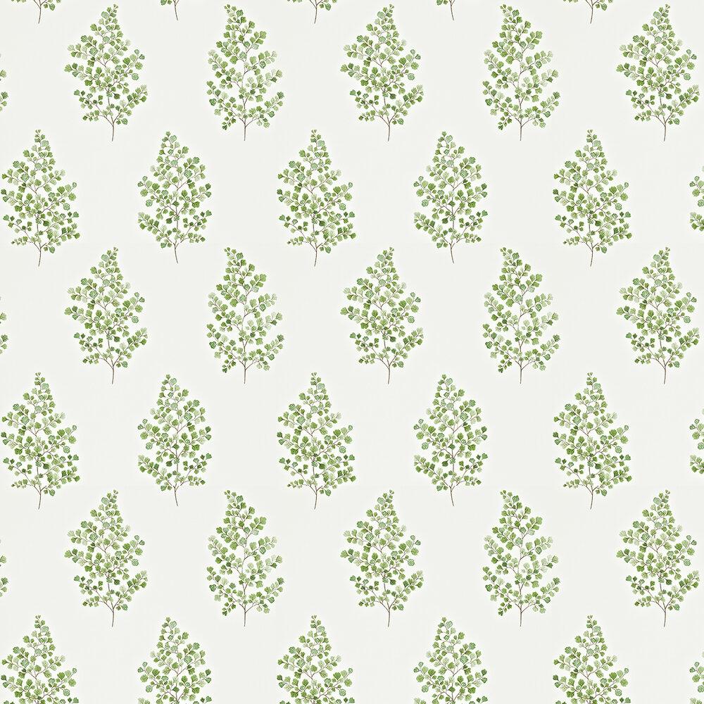 Sanderson Angel Ferns Green / Off White Wallpaper - Product code: 211995