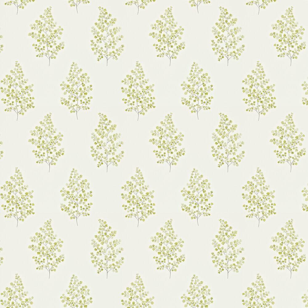 Sanderson Angel Ferns Olive / Off White Wallpaper - Product code: 211998
