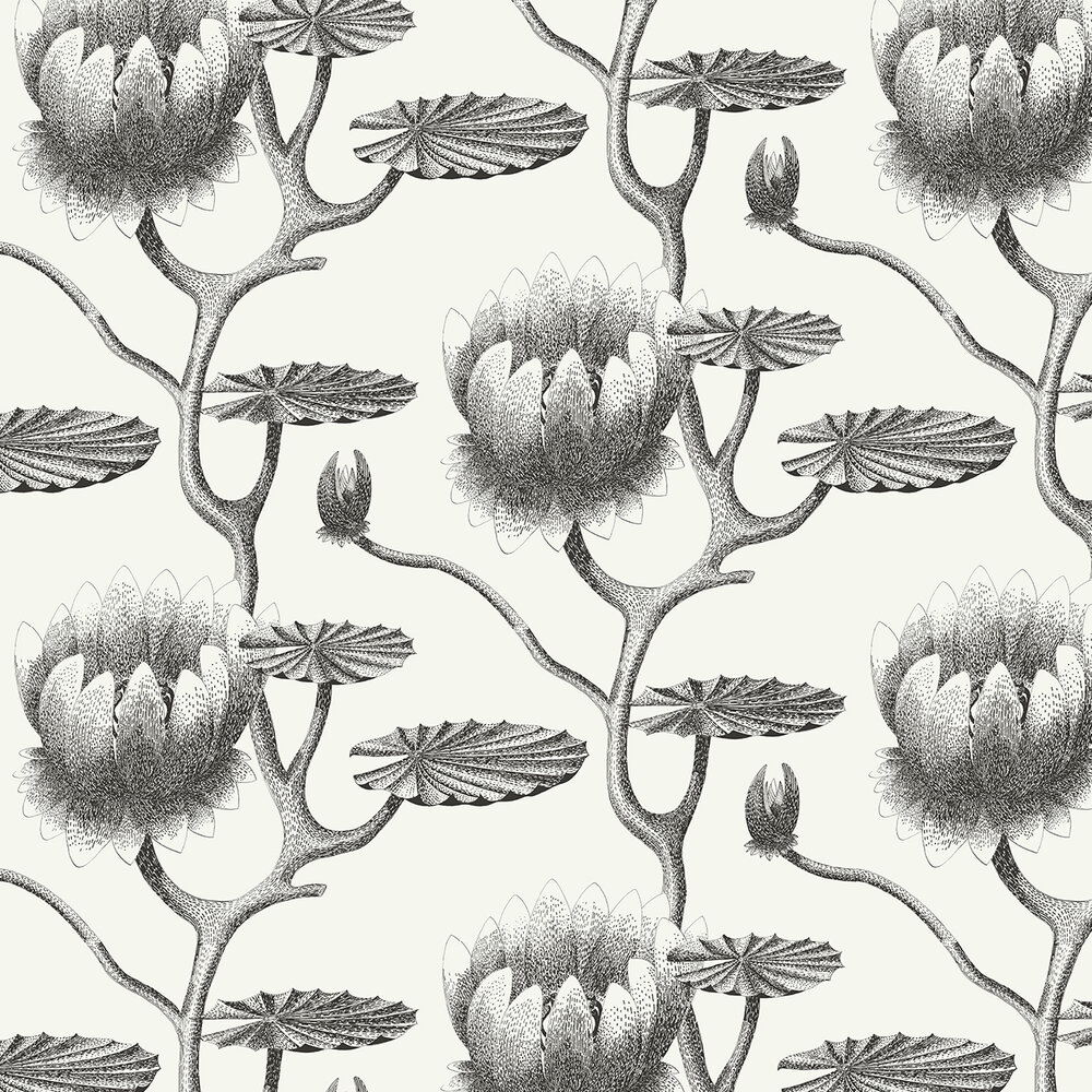Lily Wallpaper - Black & White - by Cole & Son
