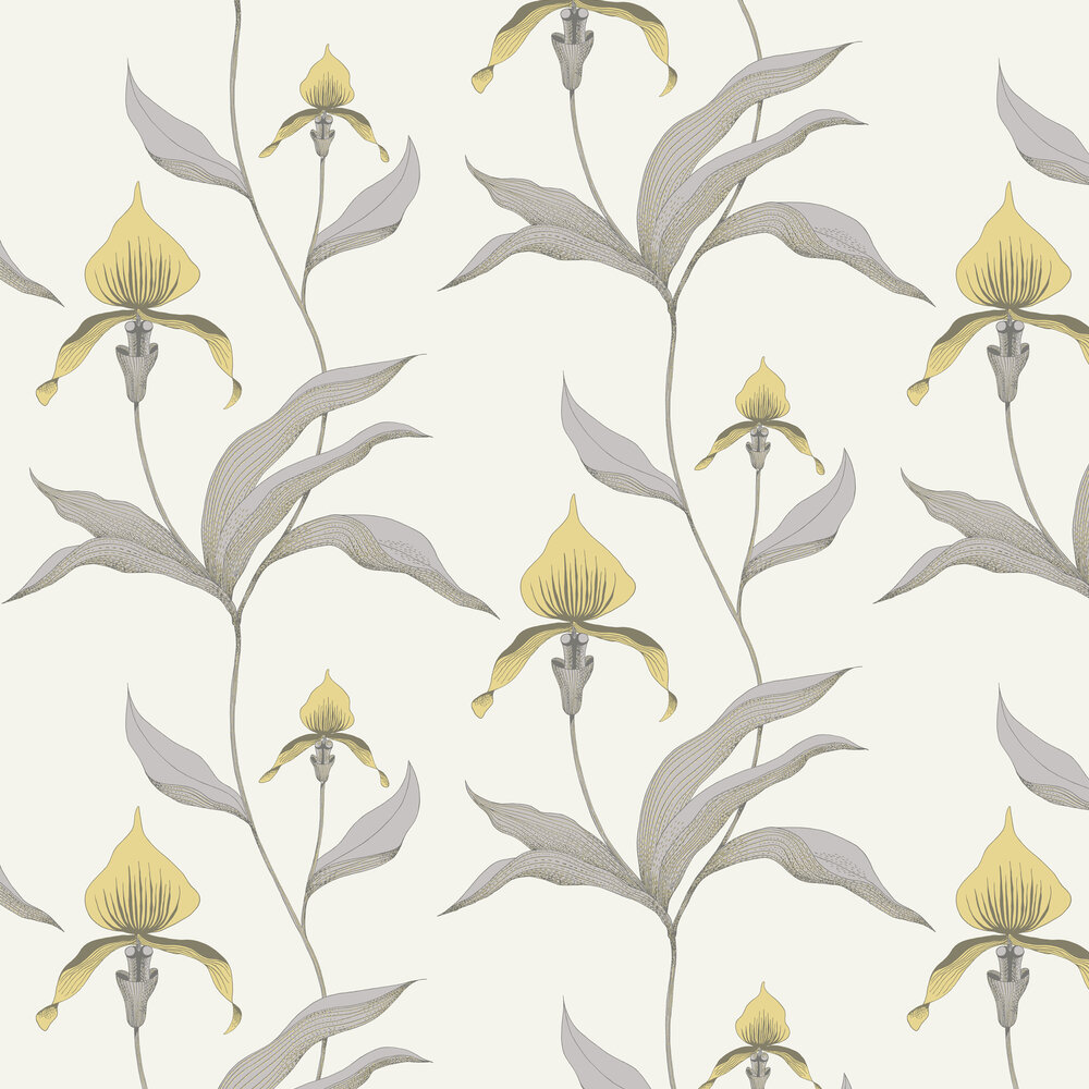 Orchid Wallpaper - Yellow - by Cole & Son