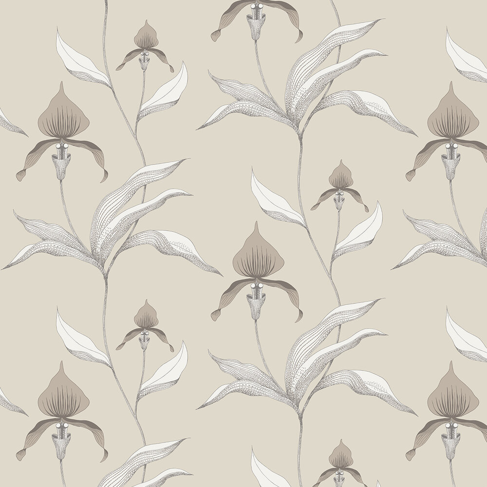 Orchid Wallpaper - Grey - by Cole & Son