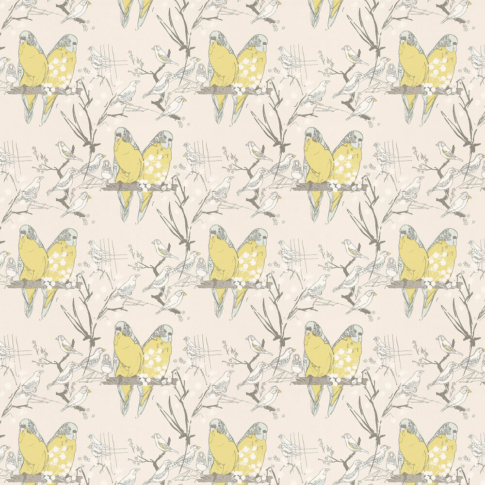 Budgie Wallpaper - Yellow / Grey - by Belynda Sharples