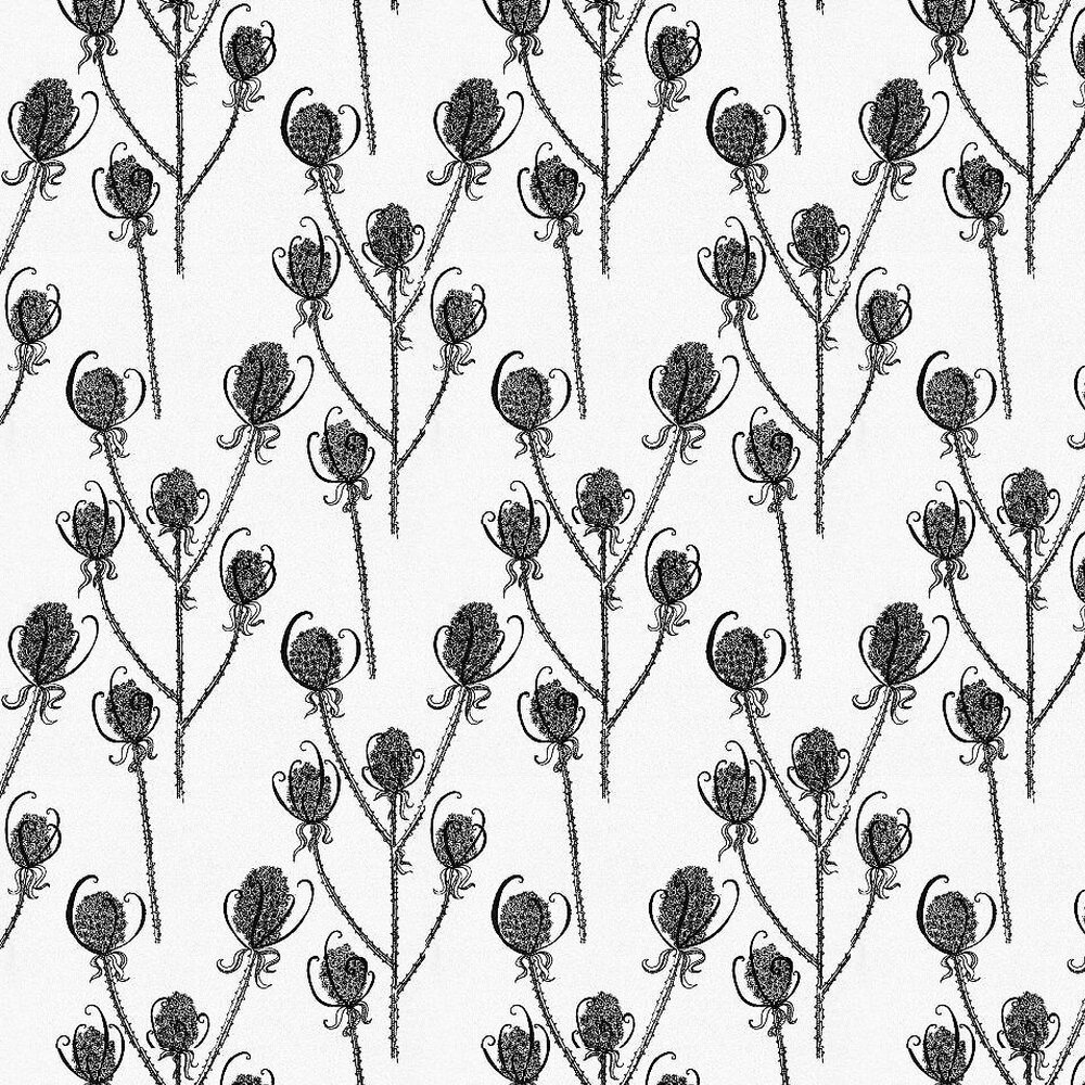 Hubbard and Reenie Teasels - Magpie Black / White Wallpaper - Product code: TSL1