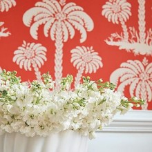Thibaut Summer House Wallpaper Collection
