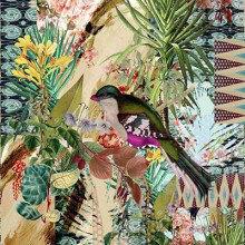 Vilber Wallpaper Collection