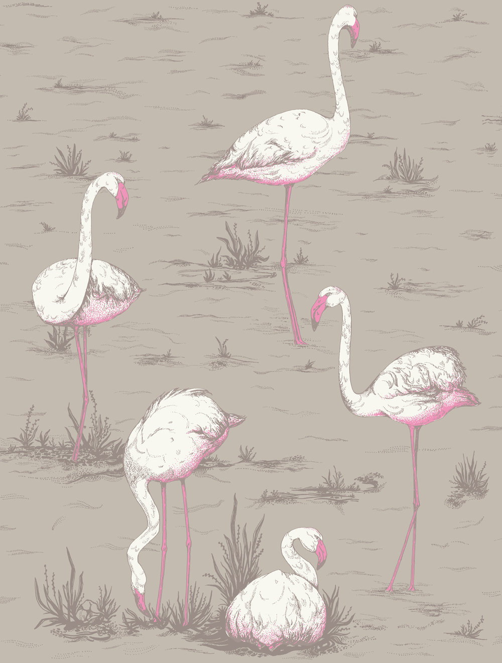 Cole & Son Flamingos Grey Wallpaper main image