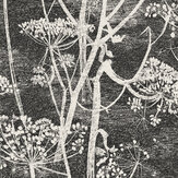 Cole & Son Cow Parsley Black / White Wallpaper