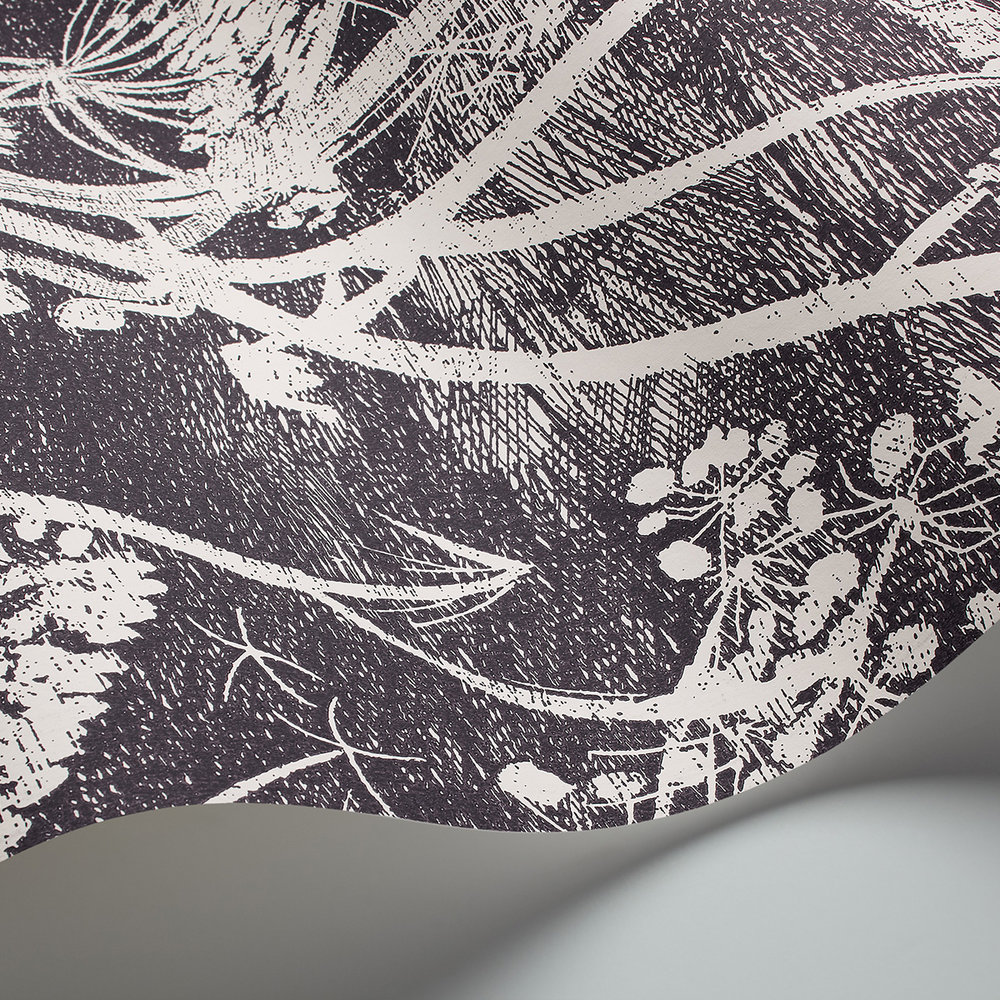 Cow Parsley Wallpaper - Black / White - by Cole & Son