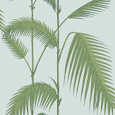 Cole & Son Palm Leaves Green / Off White Wallpaper