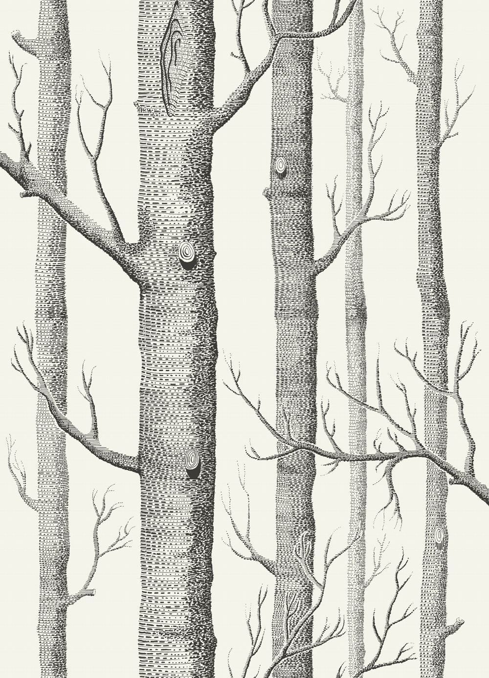 Cole & Son Woods Black / White Wallpaper main image