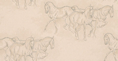 Image of Lewis & Wood Wallpapers Equus, LW74109