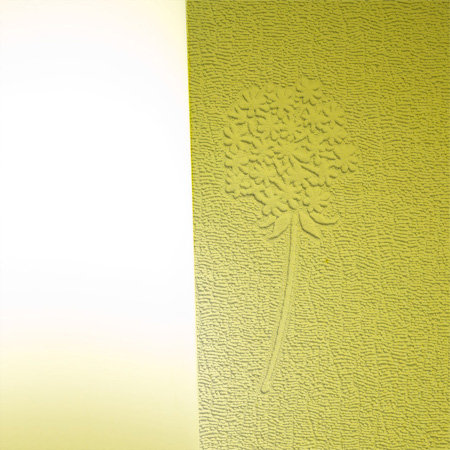 Dandelion Blush Wallpaper - White - by Anaglypta