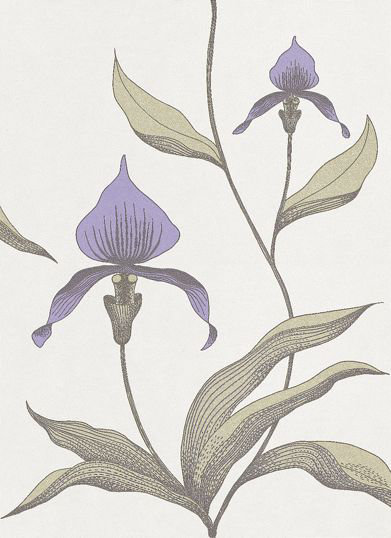 Cole & Son Orchid Wallpaper main image