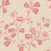 Little Greene Broadwick St Pink / Neutral Wallpaper