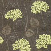 Kandola Hydrangea Lime / Chocolate Wallpaper