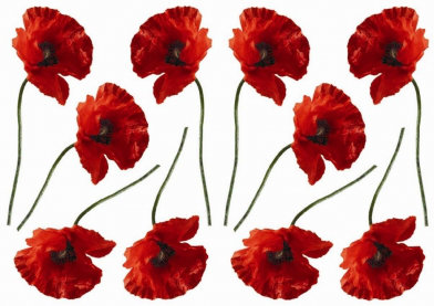 Image of Creative Wall Art Stickers Small Poppy Stickers, 157004