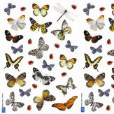 Creative Wall Art Small Butterfly Stickers