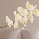 Creative Wall Art Large Orchid Sticker