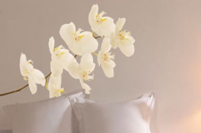 Creative Wall Art Stickers Large Orchid Sticker 160820