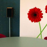 Creative Wall Art Medium Gerbera stickers