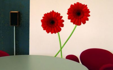 Image of Creative Wall Art Stickers Medium Gerbera stickers, 160723