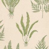 Sanderson Woodland Fern Green / Stone Wallpaper