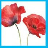 Arthouse Painted Poppies Art - Product code: 000522