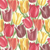 Sanderson Early Tulips Aubergine / Red Wallpaper - Product code: DVIWEA103