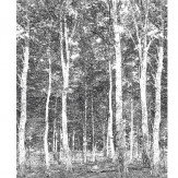 Mr Perswall Woods Mural - Product code: DM216-4-W