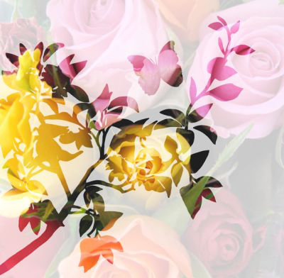 Mr Perswall Roses in the Shadow Mural - Product code: P011301-6