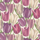 Sanderson Early Tulips Purple / Plum Wallpaper - Product code: DVIWEA101