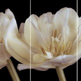 Arthouse Black Tulip Triptych Art - Product code: 000327