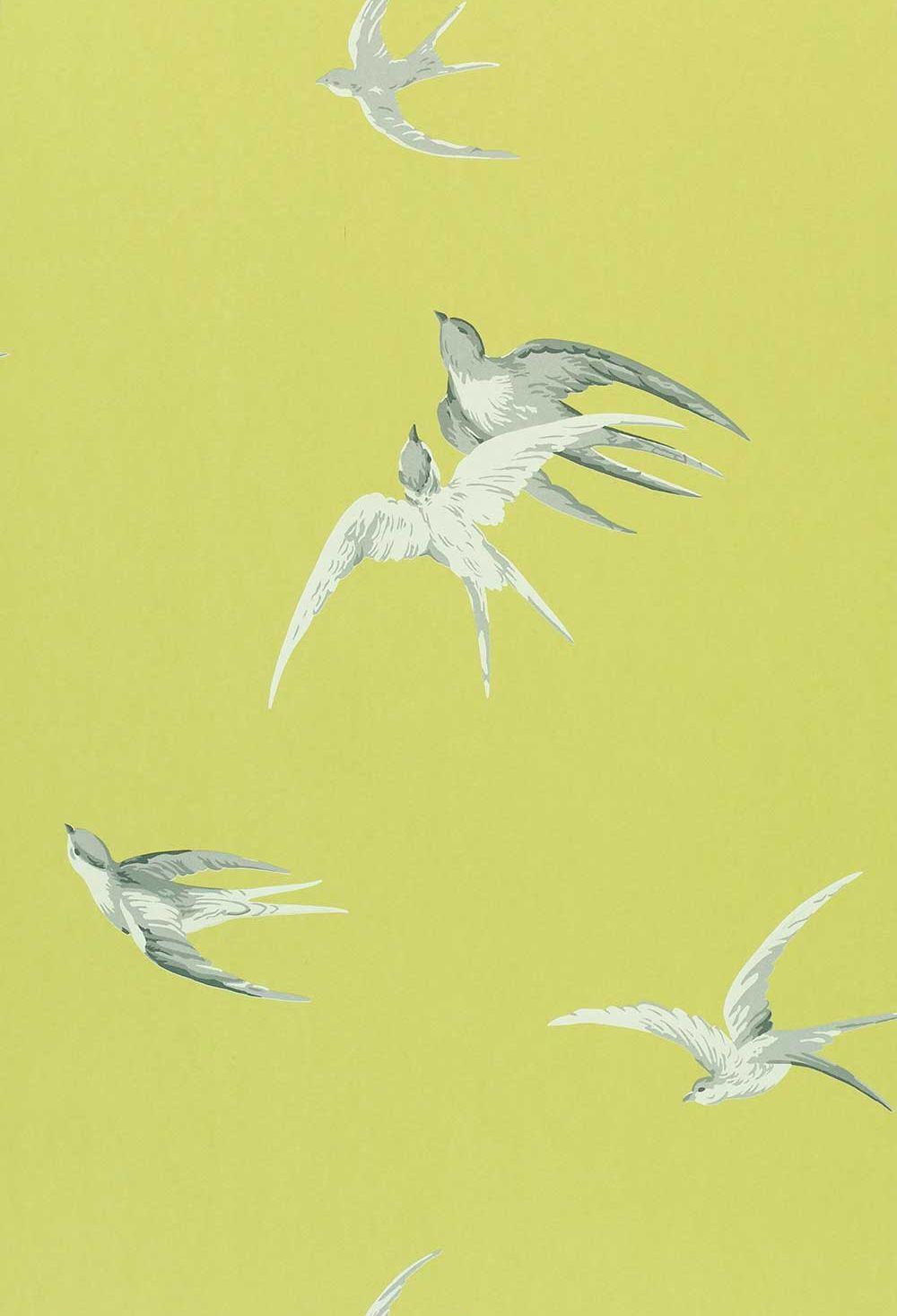 Sanderson Swallows Lime Wallpaper main image