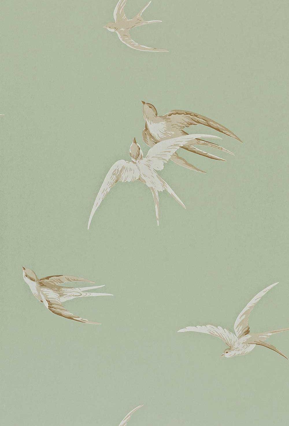 Swallows by sanderson grey green wallpaper direct - Sanderson swallows wallpaper pebble ...
