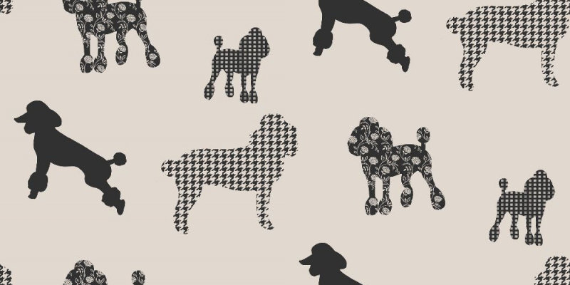 black and grey backgrounds. Crown Wallpaper Poodles