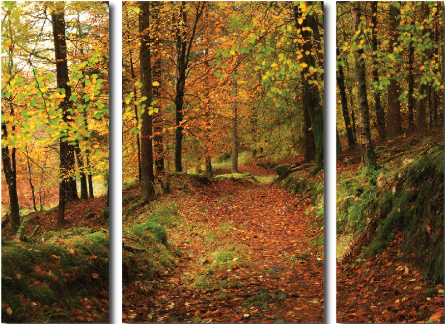 Image of Arthouse Art Autumn Path Triptych, 000653
