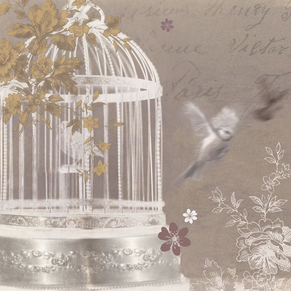 Vintage Bird Cage Backgrounds HD Wallpapers Download Free Images Wallpaper [1000image.com]