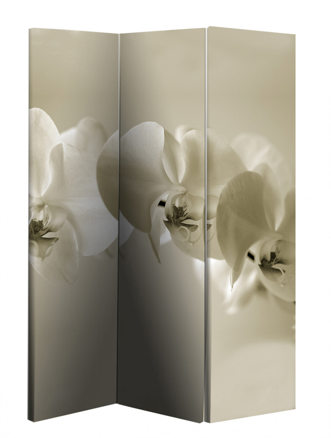 Arthouse Room dividers Sepia Orchid Screen, 008103