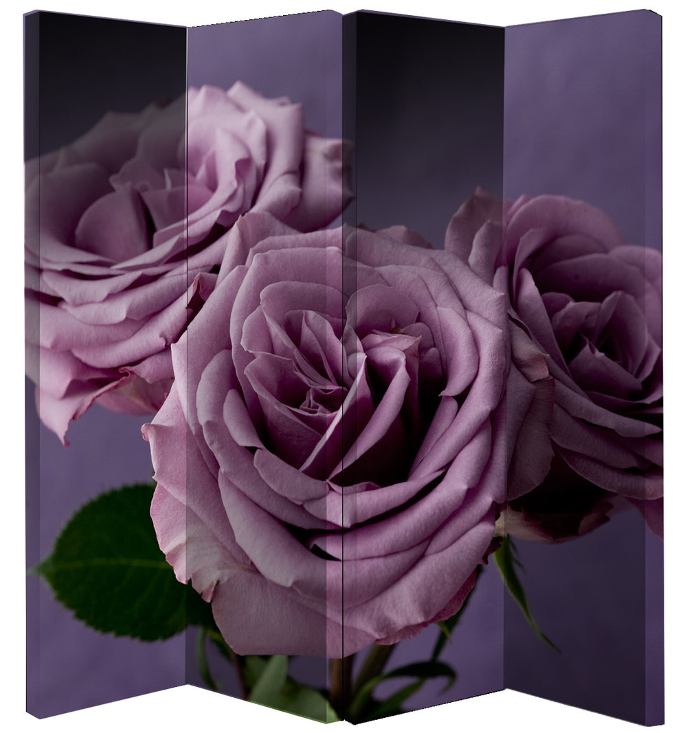Arthouse Plum Roses Screen Room Divider - Product code: 008131