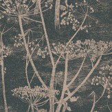 Cole & Son Cow Parsley Black / Gold Wallpaper