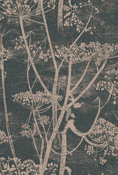 Cole & Son Cow Parsley Black / Gold Wallpaper main image