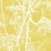 Cole & Son Cow Parsley Citrus Wallpaper