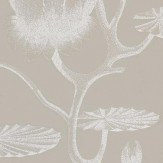 Cole & Son Lily White / Grey / Beige Wallpaper