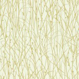 Clarissa Hulse Grasses Lime / Cream Wallpaper - Product code: 110154