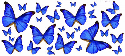 Image of Creative Wall Art Stickers Blue Butterfly Sticker, 160355