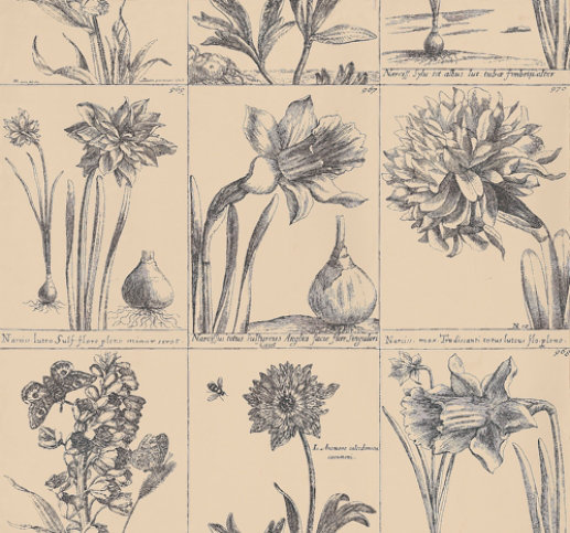 Image of Thibaut Wallpapers Prints, 839-T-5654