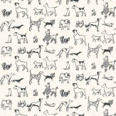 Thibaut Best in Show Black / White Wallpaper - Product code: 839-T-5102