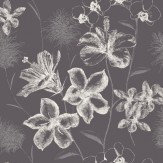 Albany Emily Charcoal Wallpaper - Product code: 267920