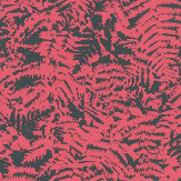 Little Greene Fern Pink Wallpaper