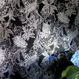 Erica Wakerly Hothouse Black / Silver Wallpaper